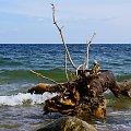 Bałtyk. #Gdynia #okolice