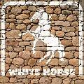 Malowany koń #BiałyKoń #KamiennaŚciana #inkscape #koń #ściana #WhiteHorse #konie