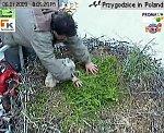 http://images47.fotosik.pl/136/8e9642cab7da0de7m.jpg