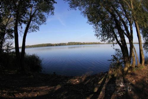 images47.fotosik.pl/1684/497165b259c4f48bmed.jpg