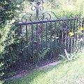 Brama #ogrodzenie #ornament #wzór