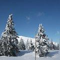Widok na Śnieżkę od czeskiej strony :) #Karkonosze #zima #śnieg #Śnieżka