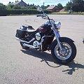 #Kawasaki #Vulcan #VN800 #Classic