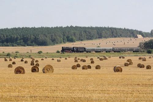 parowóz OL 49 59, trasa Poznań - Wolsztyn, okolice Szreniawy, 08.08.2009 #kolej #kolejnictwo #lokomotywa #lokomotywy #OL49 #parowozy #parowóz #PKP #pociąg #PojazdySzynowe #Szreniawa #Train #Eisenbahn #Zug #Dampflok #Dampfeisenbahn #Ol4959 #vlak