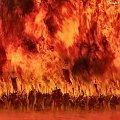 Ogień #Nightwood #Ogień #Ramki #Smoki #Żywioł