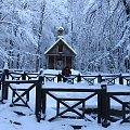 Kapliczka Św. Franciszka #Góry #Łysica #GóryŚwiętokrzyskie