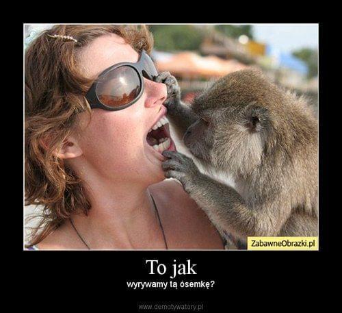 http://images47.fotosik.pl/318/4238dec4b223c5bd.jpg