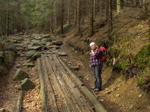 Na żółtym szlaku do Schroniska Pod Łabskim Szczytem #góry #Karkonosze #szlaki #ŁabskiSzczyt #SzklarskaPoręba