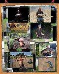 images47.fotosik.pl/337/ea225fa99506328bm.jpg