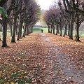 #jesień #bydgoszcz #krajobraz #park #ostromecko #brda #ada