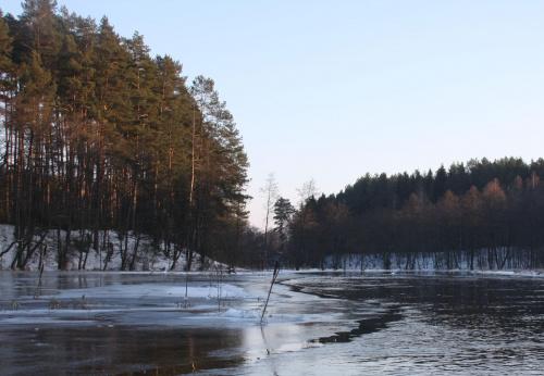 Rzeka Brda - 25.02.2011 - zdjęcie z samotnego spływu kajakowego. #BrdaZimą #Brda