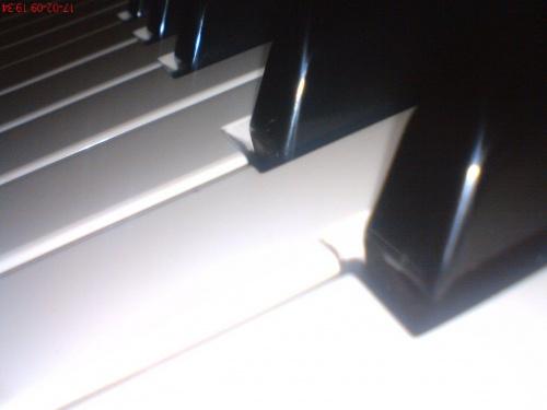 #BiałoCzarne #klawisze #organy #pianino #fortepian #muzyka #utwory