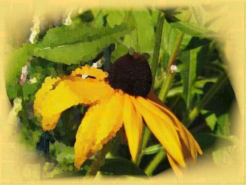 Wariacje na temat rudbekii-zaczęłam malować ale w połowie zdjęcia stwierdziłam, że tak jest ciekawiej! #przeróbki #inaczej #rudbekia #kwiat #namalowane #konik