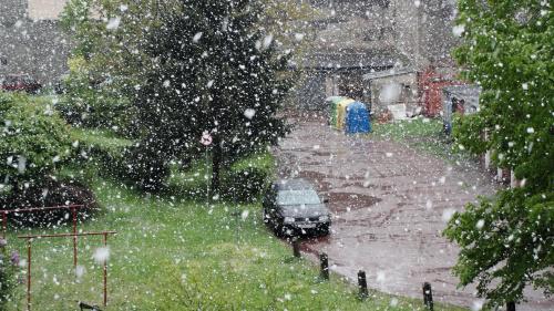 Tak u mnie wyglądała majówka 2011 (Racibórz, Śląskie) #białe #zima #krajobrazy #wiosna #Śląskie #śnieg #slaskie #sanki #Górny #biało #Śląsk #mróz #gorny #ulewa #slask #Racibórz #raciborz