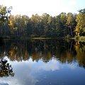 Las niedaleko Luciejowa #jesień #jezioro #łódzkie #las #odbicie #weekend