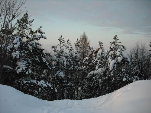 zima2009 #zima